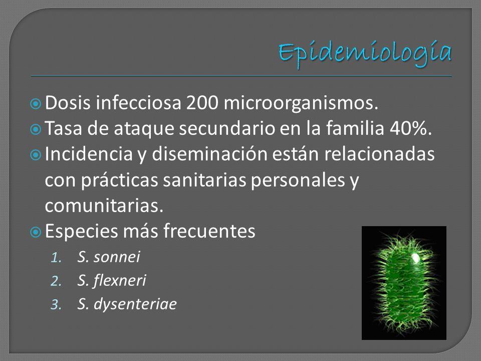 Dosis infecciosa 200 microorganismos. Tasa de ataque secundario en la familia 40%. Incidencia y diseminación están relacionadas con prácticas sanitari
