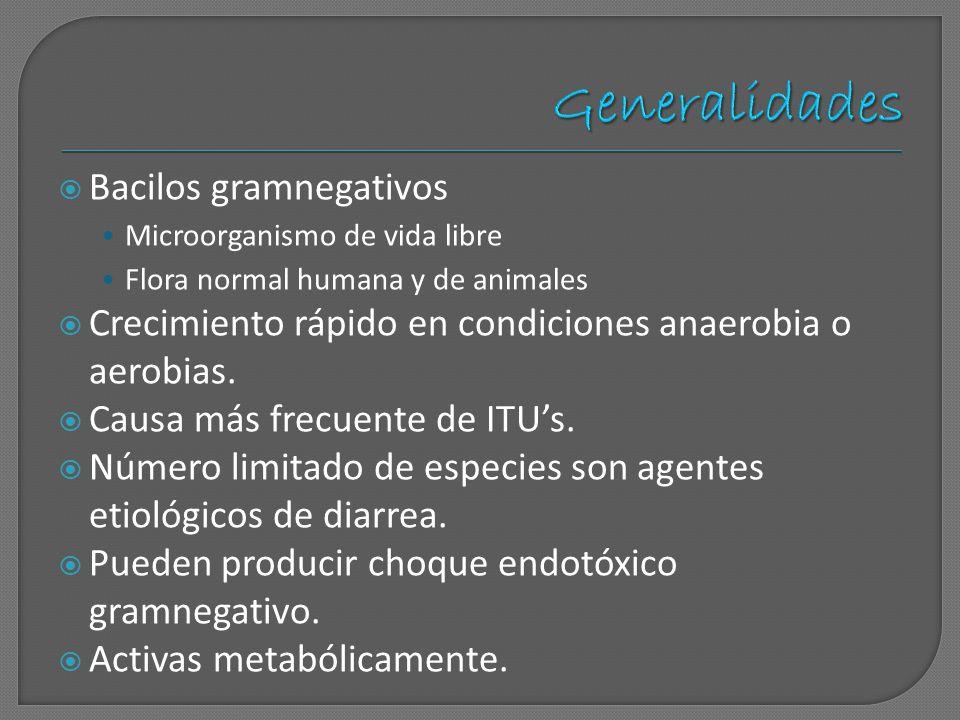 Bacilos gramnegativos Microorganismo de vida libre Flora normal humana y de animales Crecimiento rápido en condiciones anaerobia o aerobias. Causa más