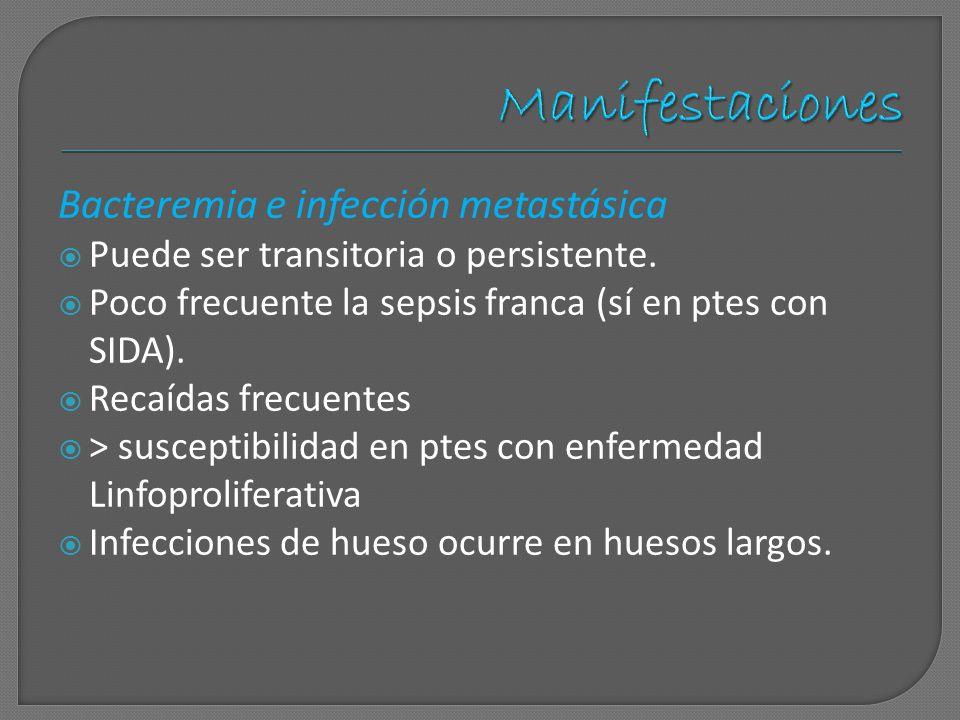 Manifestaciones Bacteremia e infección metastásica Puede ser transitoria o persistente. Poco frecuente la sepsis franca (sí en ptes con SIDA). Recaída