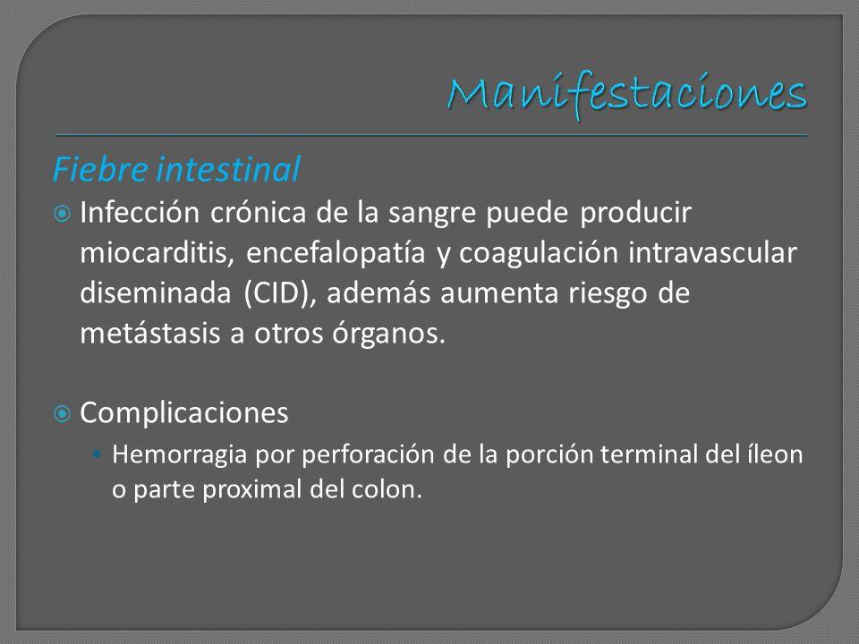 Fiebre intestinal Infección crónica de la sangre puede producir miocarditis, encefalopatía y coagulación intravascular diseminada (CID), además aument