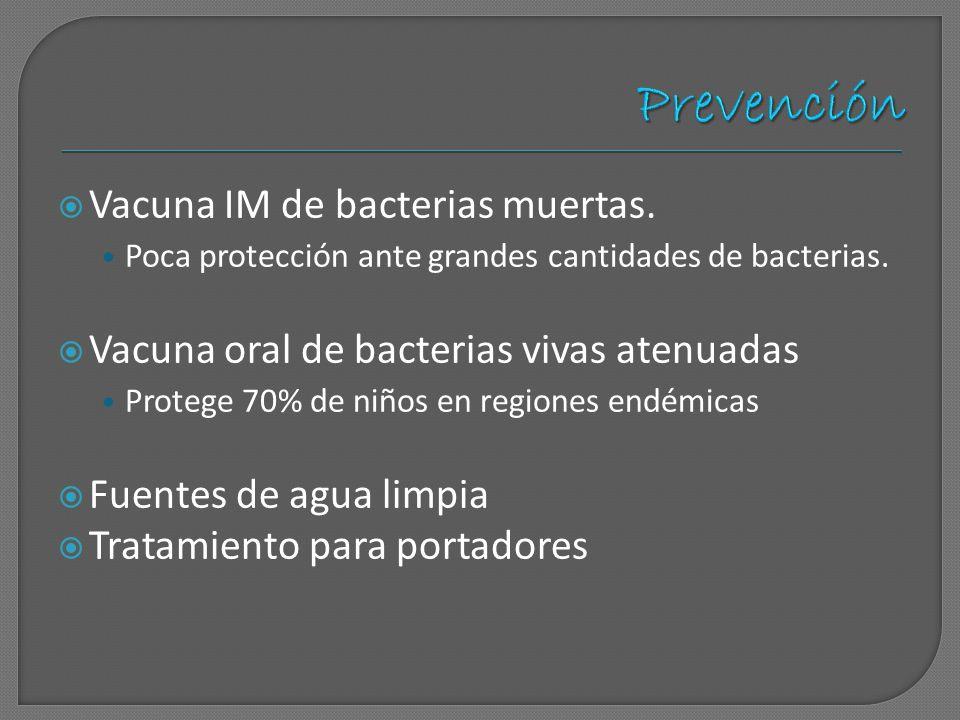 Vacuna IM de bacterias muertas. Poca protección ante grandes cantidades de bacterias. Vacuna oral de bacterias vivas atenuadas Protege 70% de niños en