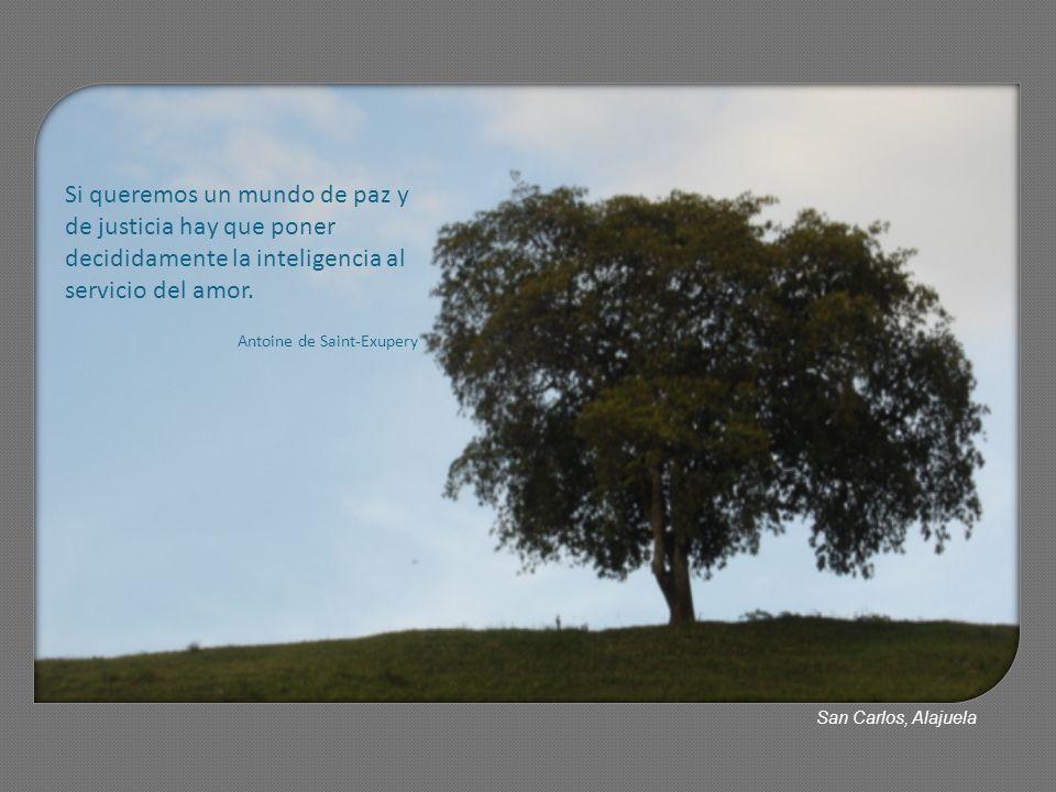 Si queremos un mundo de paz y de justicia hay que poner decididamente la inteligencia al servicio del amor. Antoine de Saint-Exupery San Carlos, Alaju