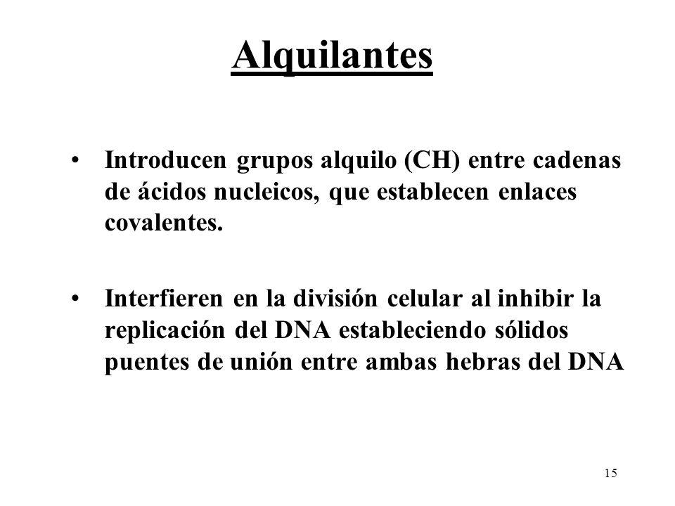15 Alquilantes Introducen grupos alquilo (CH) entre cadenas de ácidos nucleicos, que establecen enlaces covalentes. Interfieren en la división celular