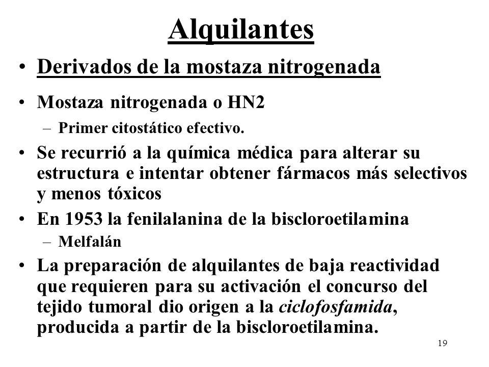 19 Alquilantes Derivados de la mostaza nitrogenada Mostaza nitrogenada o HN2 –Primer citostático efectivo. Se recurrió a la química médica para altera