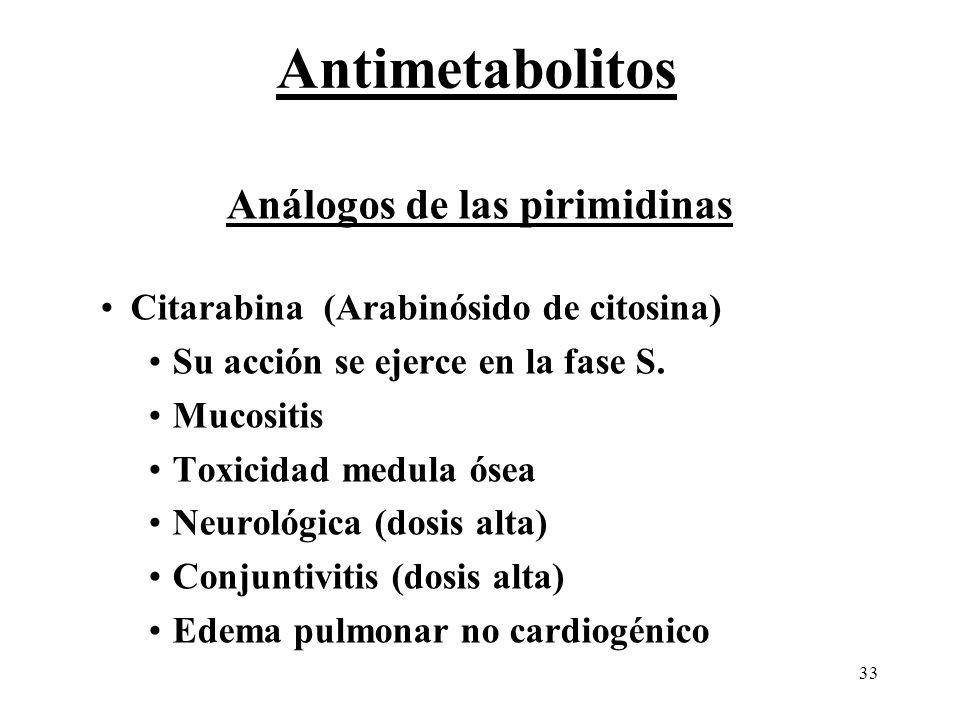33 Análogos de las pirimidinas Citarabina (Arabinósido de citosina) Su acción se ejerce en la fase S. Mucositis Toxicidad medula ósea Neurológica (dos