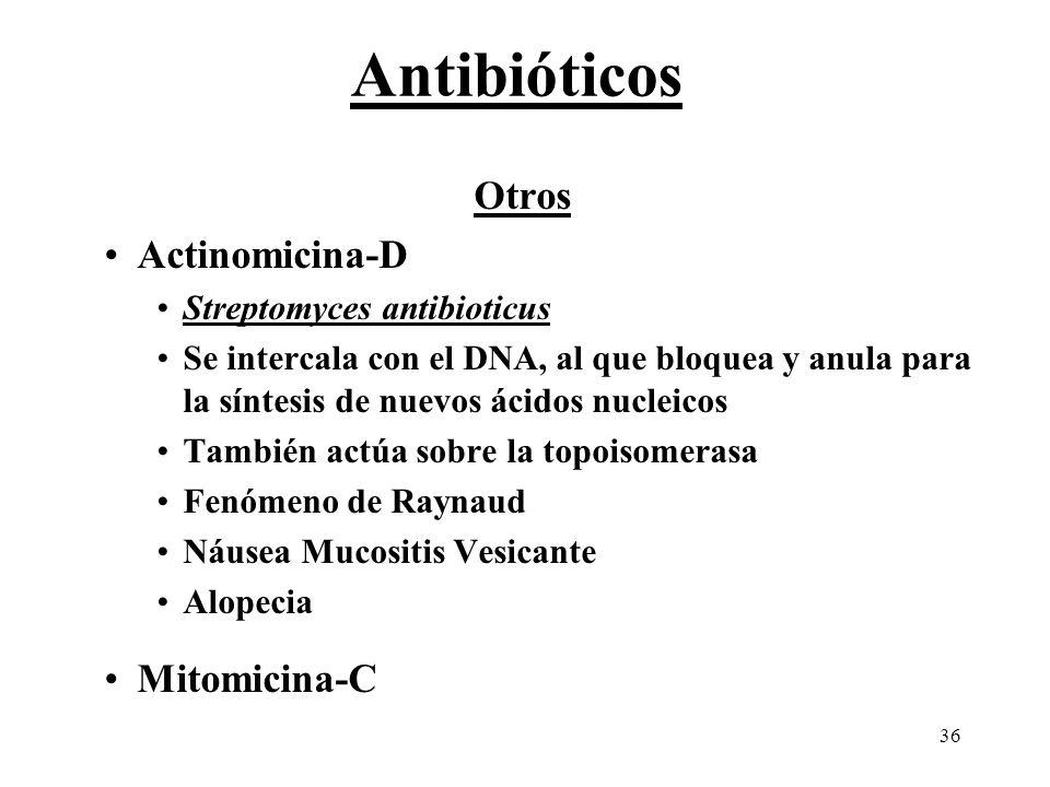 36 Otros Actinomicina-D Streptomyces antibioticus Se intercala con el DNA, al que bloquea y anula para la síntesis de nuevos ácidos nucleicos También