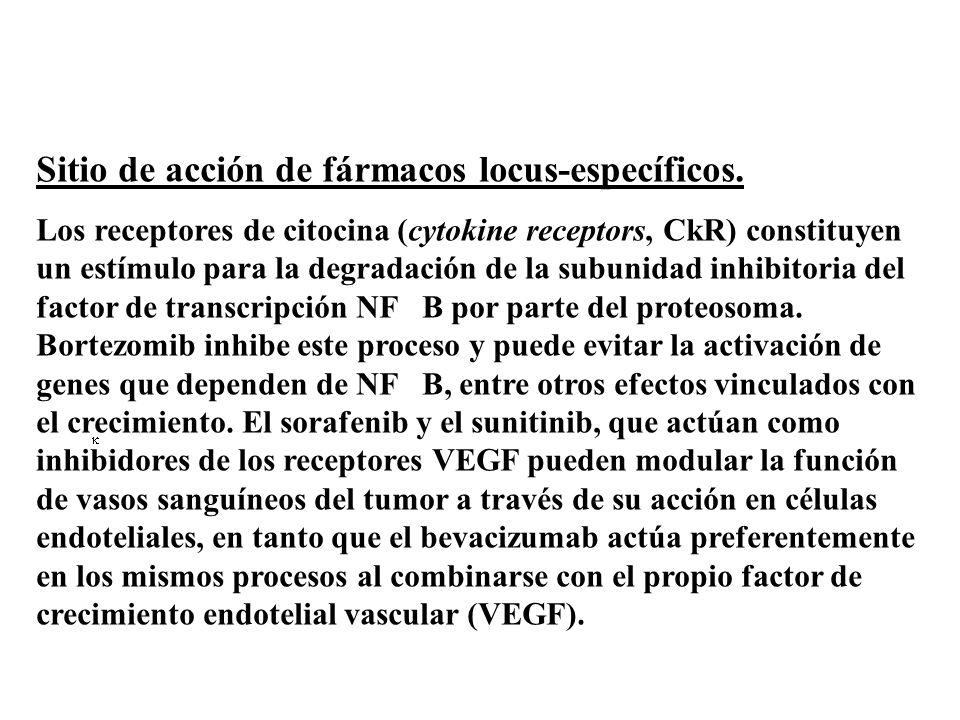 Sitio de acción de fármacos locus-específicos. Los receptores de citocina (cytokine receptors, CkR) constituyen un estímulo para la degradación de la