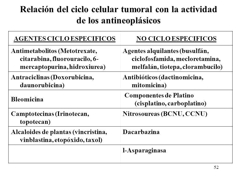 52 Relación del ciclo celular tumoral con la actividad de los antineoplásicos AGENTES CICLO ESPECIFICOSNO CICLO ESPECIFICOS Antimetabolitos (Metotrexa