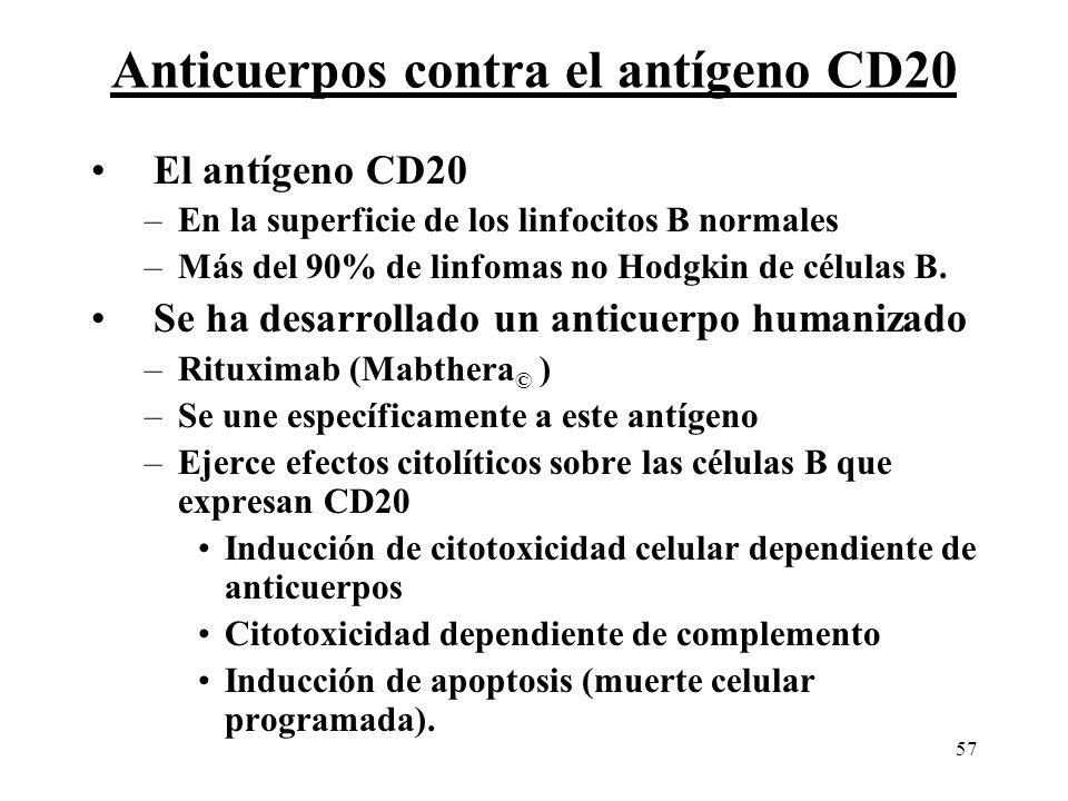 57 Anticuerpos contra el antígeno CD20 El antígeno CD20 –En la superficie de los linfocitos B normales –Más del 90% de linfomas no Hodgkin de células