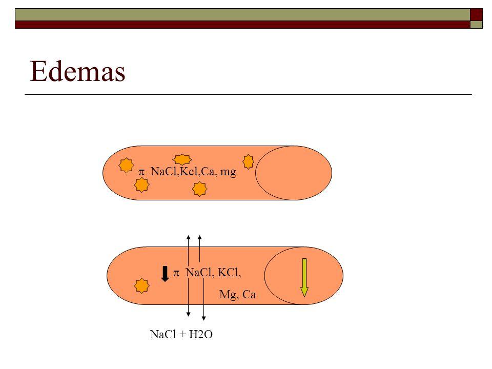 Edemas π NaCl,Kcl,Ca, mg π NaCl, KCl, Mg, Ca NaCl + H2O