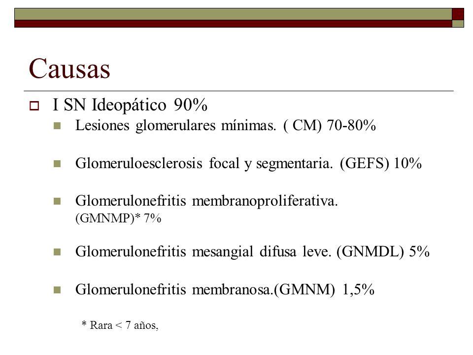 Causas I SN Ideopático 90% Lesiones glomerulares mínimas. ( CM) 70-80% Glomeruloesclerosis focal y segmentaria. (GEFS) 10% Glomerulonefritis membranop