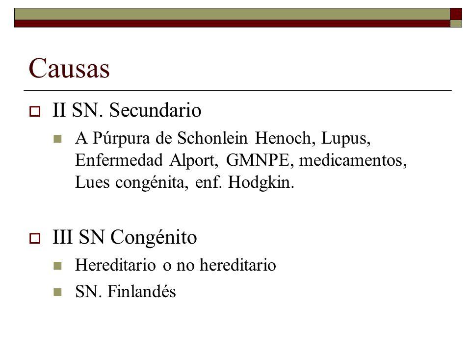 Causas II SN. Secundario A Púrpura de Schonlein Henoch, Lupus, Enfermedad Alport, GMNPE, medicamentos, Lues congénita, enf. Hodgkin. III SN Congénito