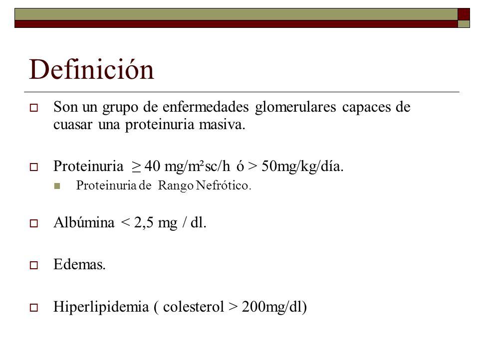 Definición Son un grupo de enfermedades glomerulares capaces de cuasar una proteinuria masiva. Proteinuria 40 mg/m²sc/h ó > 50mg/kg/día. Proteinuria d