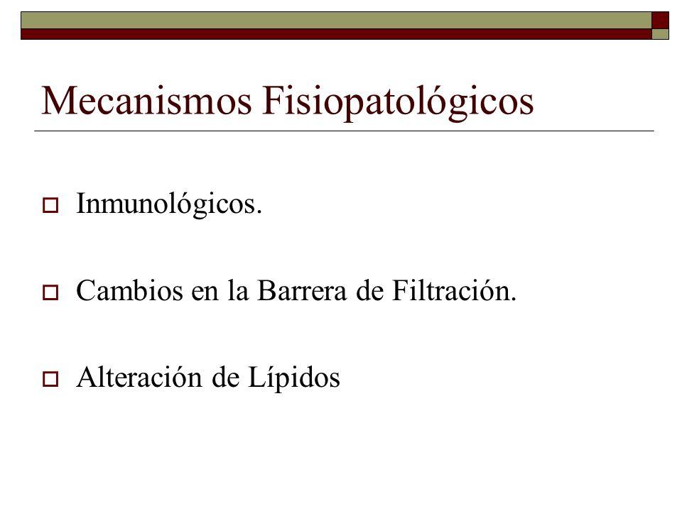 Mecanismos Fisiopatológicos Inmunológicos. Cambios en la Barrera de Filtración. Alteración de Lípidos