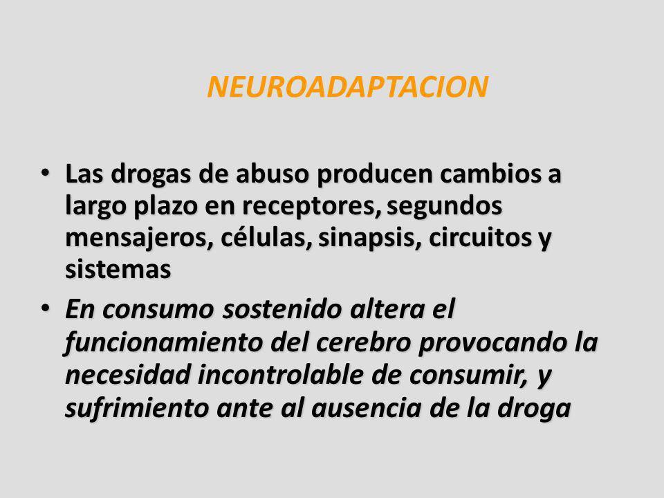 NEUROADAPTACION Las drogas de abuso producen cambios a largo plazo en receptores, segundos mensajeros, células, sinapsis, circuitos y sistemas Las dro