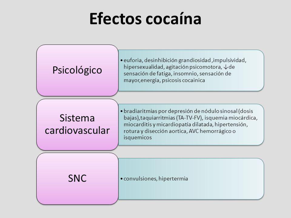 Efectos cocaína euforia, desinhibición grandiosidad,impulsividad, hipersexualidad, agitación psicomotora, de sensación de fatiga, insomnio, sensación