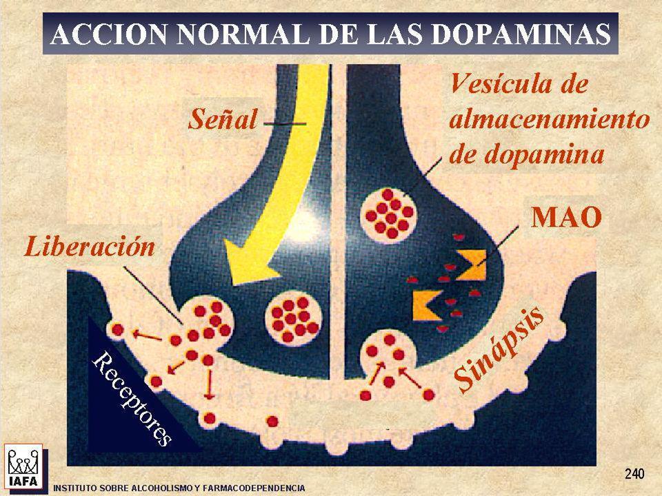 Consumo de drogas Consumo perjudicial Adicción Uso