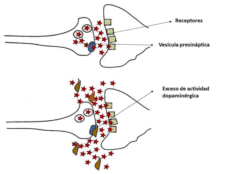 Receptores Exceso de actividad dopaminérgica Vesícula presináptica