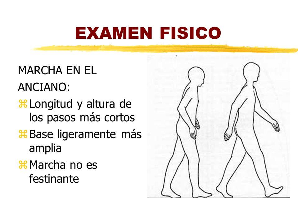 EXAMEN FISICO MARCHA EN EL ANCIANO: zLongitud y altura de los pasos más cortos zBase ligeramente más amplia zMarcha no es festinante