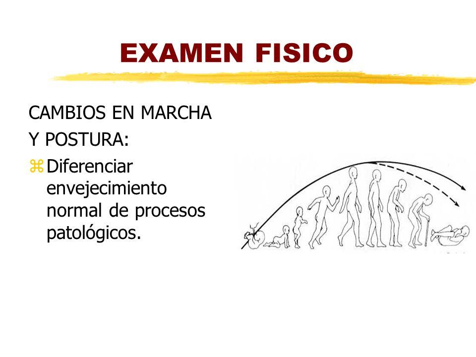 EXAMEN FISICO CAMBIOS EN MARCHA Y POSTURA: zDiferenciar envejecimiento normal de procesos patológicos.
