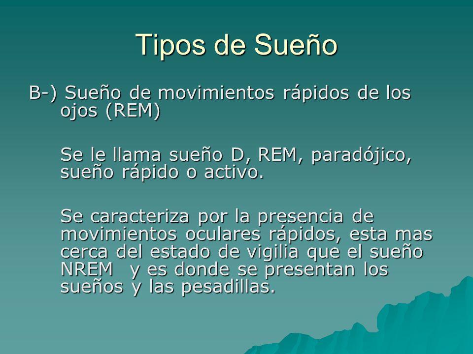 Tipos de Sueño B-) Sueño de movimientos rápidos de los ojos (REM) Se le llama sueño D, REM, paradójico, sueño rápido o activo. Se caracteriza por la p
