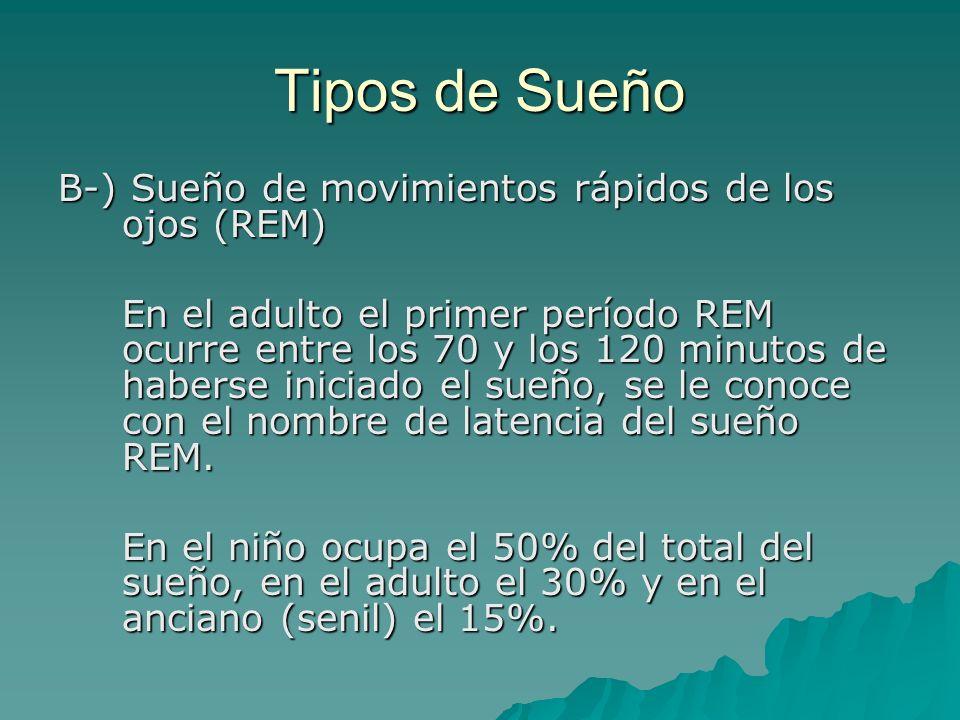 Tipos de Sueño B-) Sueño de movimientos rápidos de los ojos (REM) En el adulto el primer período REM ocurre entre los 70 y los 120 minutos de haberse