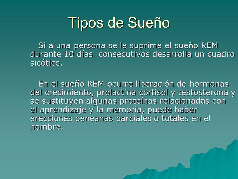 Tipos de Sueño Si a una persona se le suprime el sueño REM durante 10 días consecutivos desarrolla un cuadro sicótico. En el sueño REM ocurre liberaci