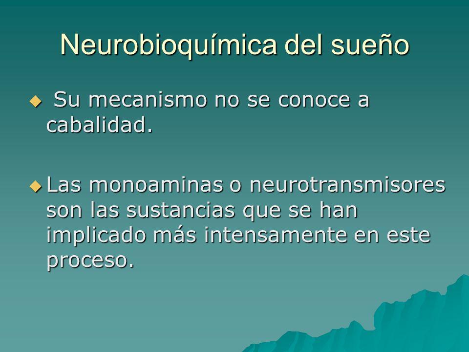 Neurobioquímica del sueño Su mecanismo no se conoce a cabalidad. Su mecanismo no se conoce a cabalidad. Las monoaminas o neurotransmisores son las sus