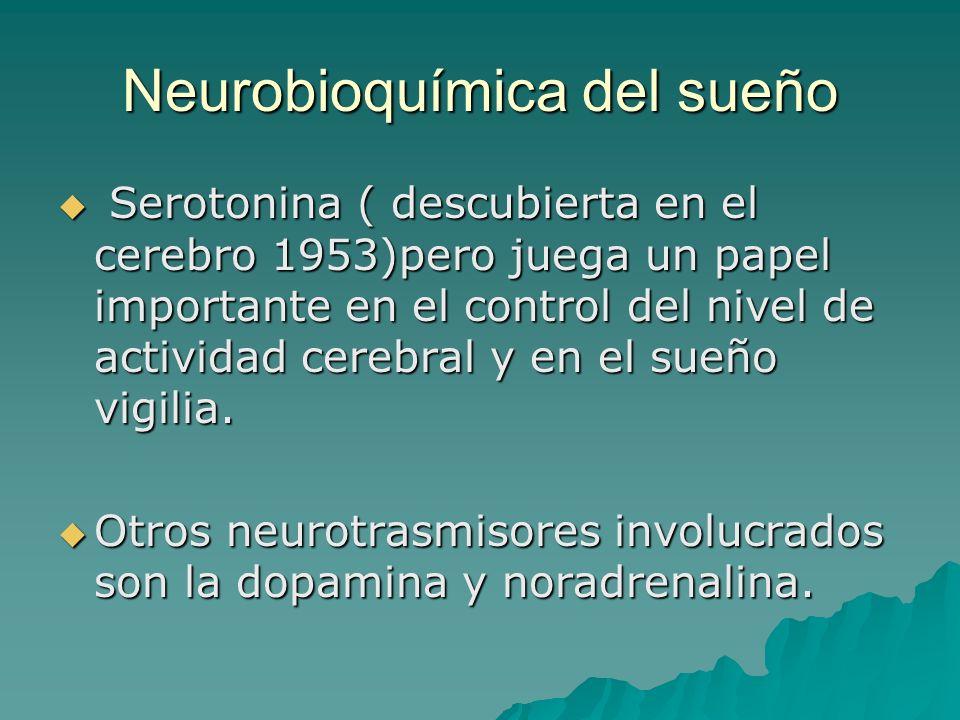 Neurobioquímica del sueño Serotonina ( descubierta en el cerebro 1953)pero juega un papel importante en el control del nivel de actividad cerebral y e