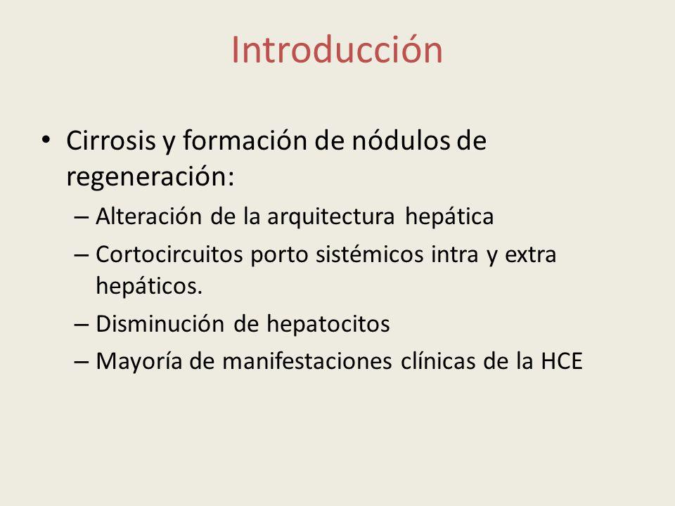 Cirrosis y formación de nódulos de regeneración: – Alteración de la arquitectura hepática – Cortocircuitos porto sistémicos intra y extra hepáticos. –