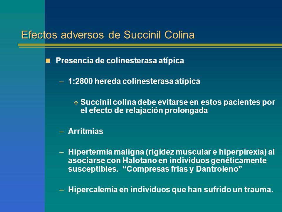Efectos adversos de Succinil Colina Presencia de colinesterasa atípica –1:2800 hereda colinesterasa atípica Succinil colina debe evitarse en estos pac
