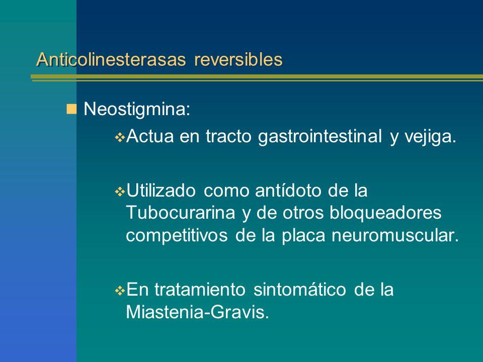 Anticolinesterasas reversibles Neostigmina: Actua en tracto gastrointestinal y vejiga. Utilizado como antídoto de la Tubocurarina y de otros bloqueado