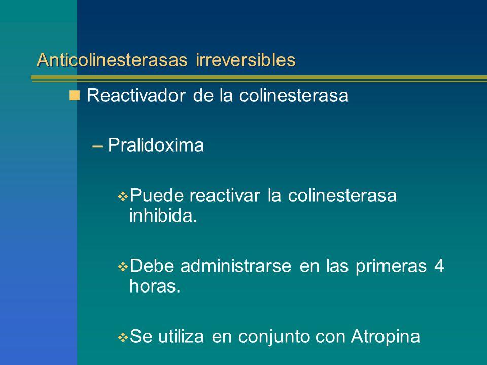 Anticolinesterasas irreversibles Reactivador de la colinesterasa –Pralidoxima Puede reactivar la colinesterasa inhibida. Debe administrarse en las pri