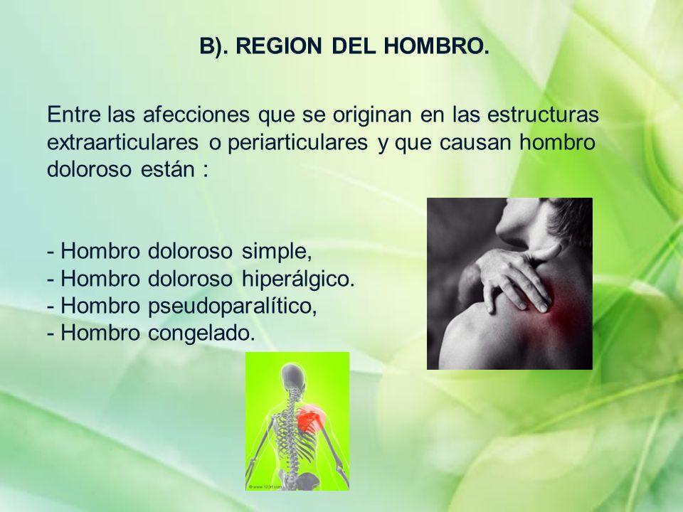 B). REGION DEL HOMBRO. Entre las afecciones que se originan en las estructuras extraarticulares o periarticulares y que causan hombro doloroso están :