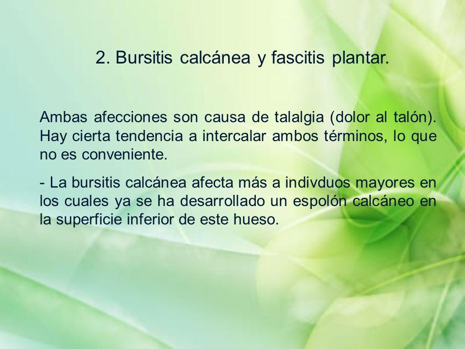 2. Bursitis calcánea y fascitis plantar. Ambas afecciones son causa de talalgia (dolor al talón). Hay cierta tendencia a intercalar ambos términos, lo