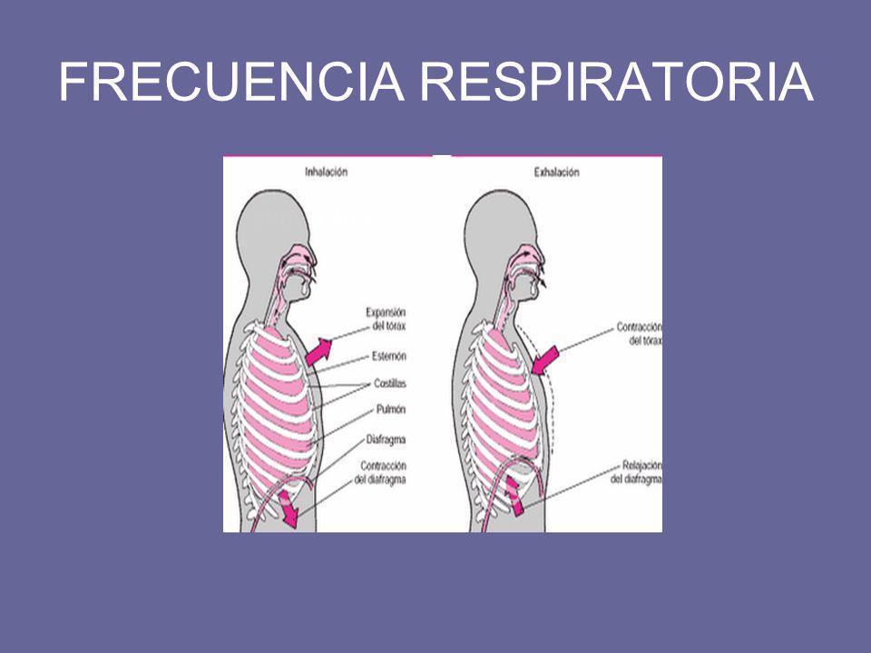 FRECUENCIA RESPIRATORIA –Inspección simple: ascenso y descenso del tórax del paciente.