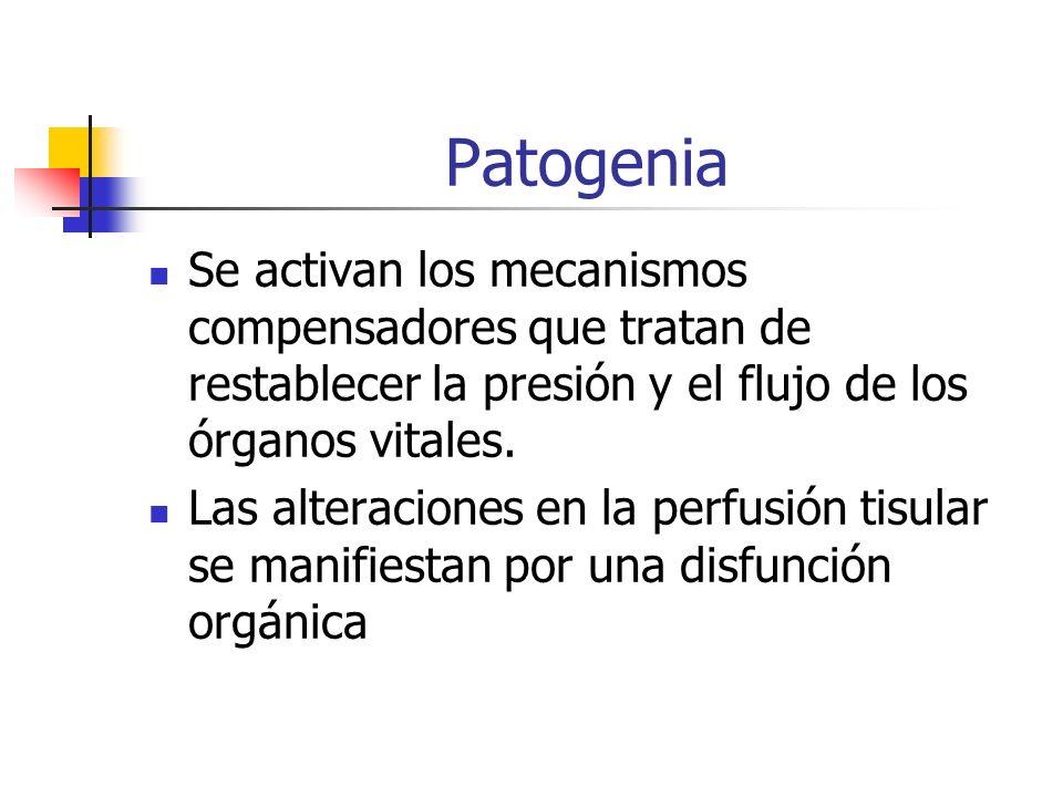 Patogenia Se activan los mecanismos compensadores que tratan de restablecer la presión y el flujo de los órganos vitales. Las alteraciones en la perfu