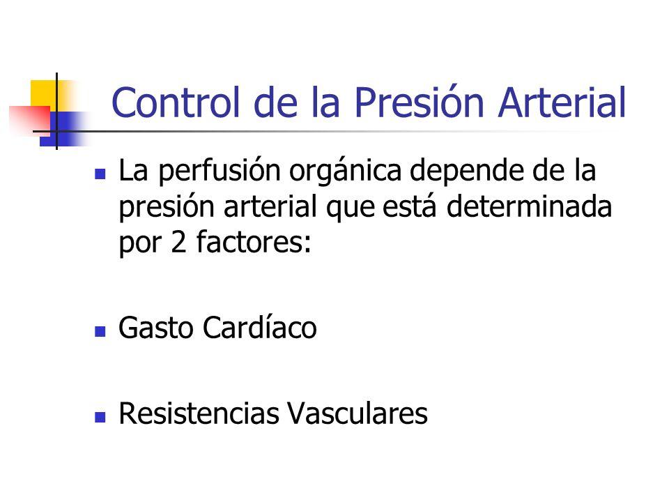 Control de la Presión Arterial La perfusión orgánica depende de la presión arterial que está determinada por 2 factores: Gasto Cardíaco Resistencias V