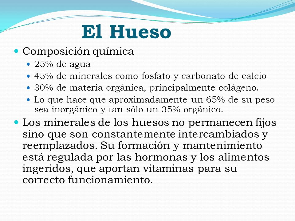 El Hueso Composición química 25% de agua 45% de minerales como fosfato y carbonato de calcio 30% de materia orgánica, principalmente colágeno. Lo que
