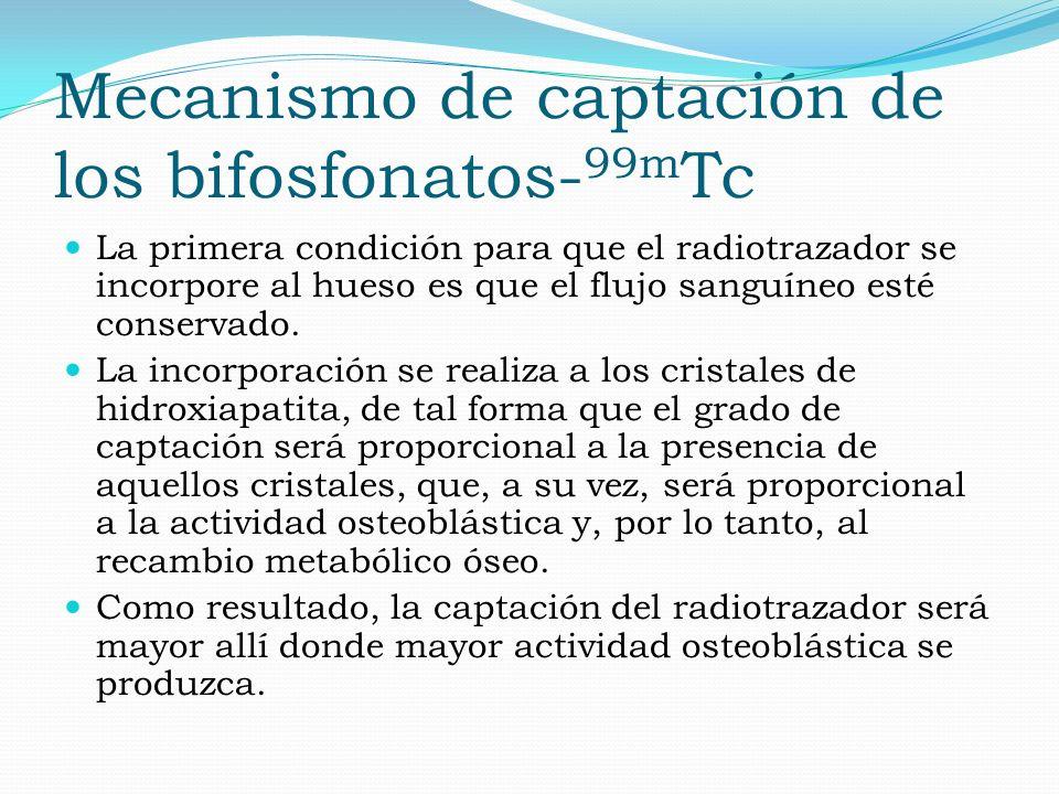 Mecanismo de captación de los bifosfonatos- 99m Tc La primera condición para que el radiotrazador se incorpore al hueso es que el flujo sanguíneo esté