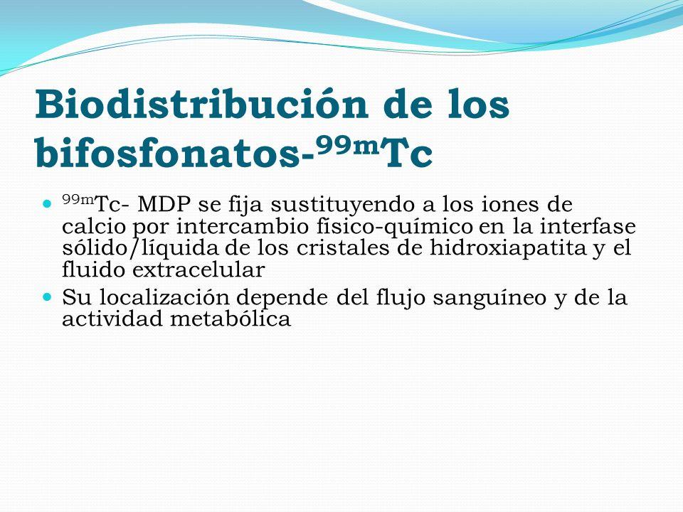 Biodistribución de los bifosfonatos- 99m Tc 99m Tc- MDP se fija sustituyendo a los iones de calcio por intercambio físico-químico en la interfase sóli
