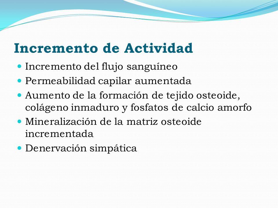 Incremento de Actividad Incremento del flujo sanguíneo Permeabilidad capilar aumentada Aumento de la formación de tejido osteoide, colágeno inmaduro y