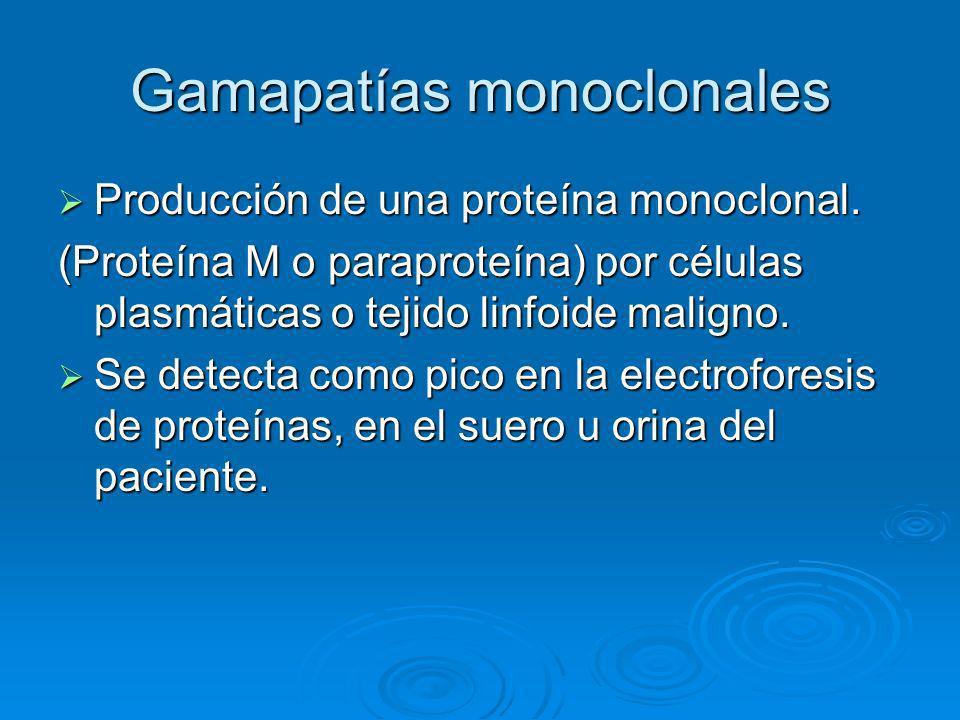 Gamapatías monoclonales Espectro de enfermedades que producen desde bajos niveles de proteínas monoclonales hasta el mieloma múltiple.