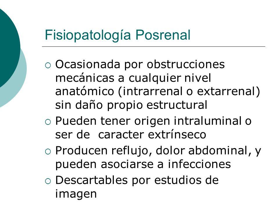 Fisiopatología Posrenal Ocasionada por obstrucciones mecánicas a cualquier nivel anatómico (intrarrenal o extarrenal) sin daño propio estructural Pued