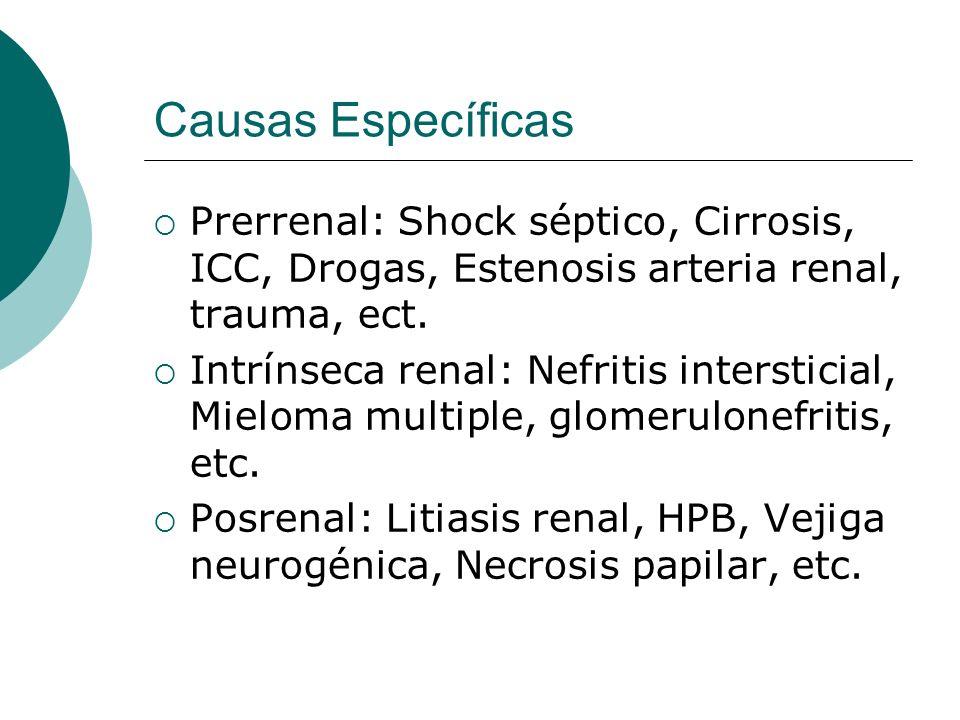 Causas Específicas Prerrenal: Shock séptico, Cirrosis, ICC, Drogas, Estenosis arteria renal, trauma, ect. Intrínseca renal: Nefritis intersticial, Mie