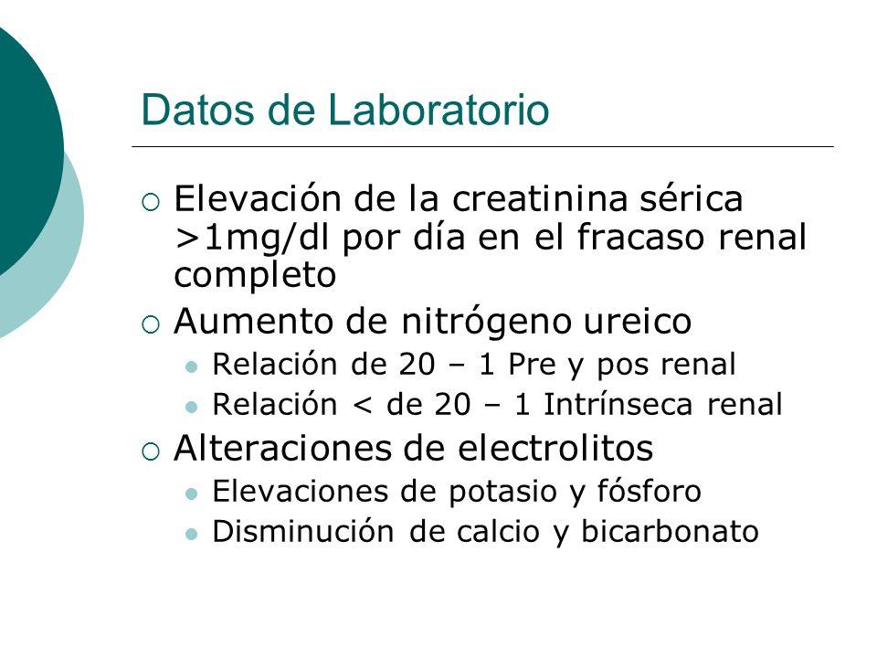 Datos de Laboratorio Elevación de la creatinina sérica >1mg/dl por día en el fracaso renal completo Aumento de nitrógeno ureico Relación de 20 – 1 Pre
