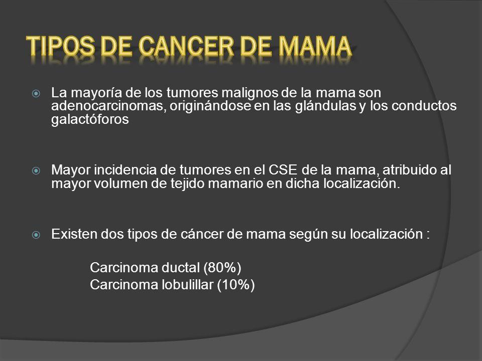 La mayoría de los tumores malignos de la mama son adenocarcinomas, originándose en las glándulas y los conductos galactóforos Mayor incidencia de tumo