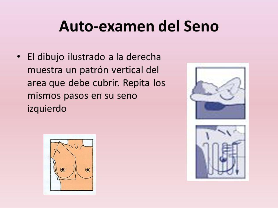 Auto-examen del Seno El dibujo ilustrado a la derecha muestra un patrón vertical del area que debe cubrir. Repita los mismos pasos en su seno izquierd