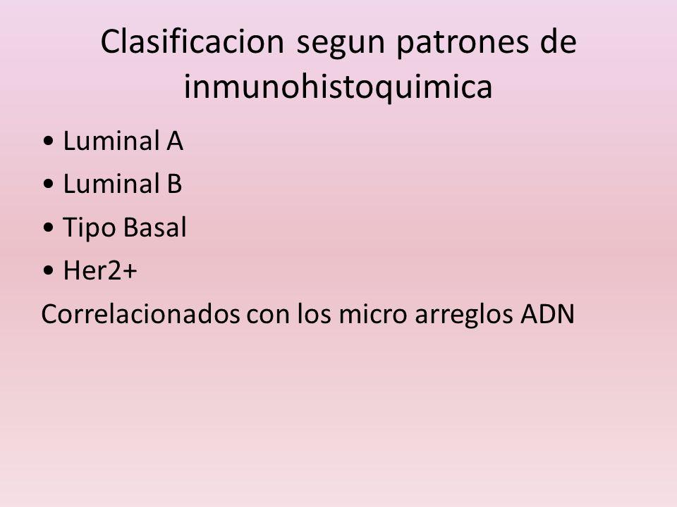 Clasificacion segun patrones de inmunohistoquimica Luminal A Luminal B Tipo Basal Her2+ Correlacionados con los micro arreglos ADN