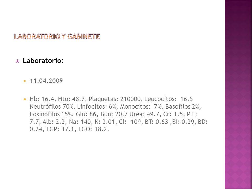 Laboratorio: 11.04.2009 Hb: 16.4, Hto: 48.7, Plaquetas: 210000, Leucocitos: 16.5 Neutrófilos 70%, Linfocitos: 6%, Monocitos: 7%, Basofilos 2%, Eosinof